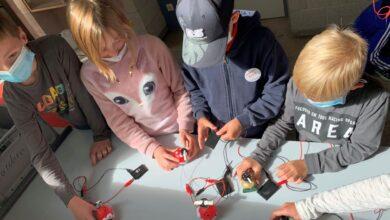 Mini-Solarmodule, LED-Lämpchen, Kabel und Mini-Windrädchen